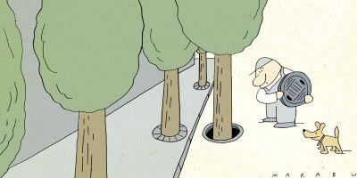 Marabu karikaturája a természetes szennyvíztisztításról